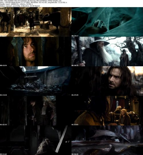 The Hobbit-The Desolation of Smaug 2013 DVDScr XVID-Snake